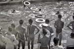 Swimming gala at RAF Khormaksar,Aden on January 5, 1958. Photo kindly supplied by Terry Craig.
